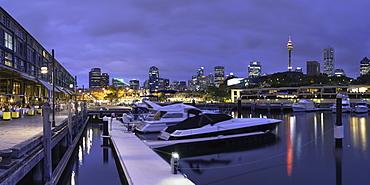 Wooloomooloo Marina at dusk, Sydney, New South Wales, Australia, Pacific