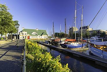 Veerhaven Marina, Rotterdam, Zuid Holland, Netherlands, Europe