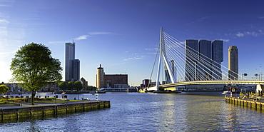 Erasmus Bridge (Erasmusbrug) and skyline, Rotterdam, Zuid Holland, Netherlands, Europe