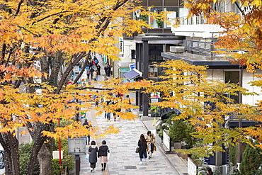 People walking along Omotesando Street, Harajuku, Tokyo, Honshu, Japan, Asia