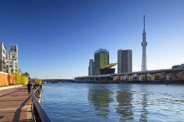 Skytree and Sumida River, Tokyo, Honshu, Japan, Asia