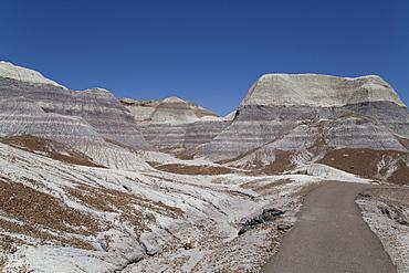 Sedimentary layers of bluish bentonite clay, Blue Mesa Trail, Blue Mesa, Petrified Forest National Park, Arizona, United States of America, North America