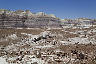 Sedimentary layers of bluish bentonite clay with petrified wood, Blue Mesa Trail, Blue Mesa, Petrified Forest National Park, Arizona, United States of America, North America