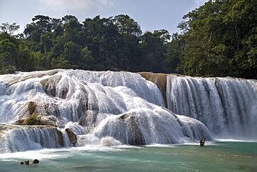 Rio Tulija, Agua Azul, National Park, near Palenque, Chiapas, Mexico, North America