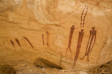Wild Horse Canyon Pictograph Panel, Barrier Canyon style, near Hanksville, Utah, United States of America, North America