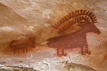 Jones Hole, Fremont style pictographs, dating from AD 700 to AD 1200, Dinosaur National Monument, Utah, United States of America, North America