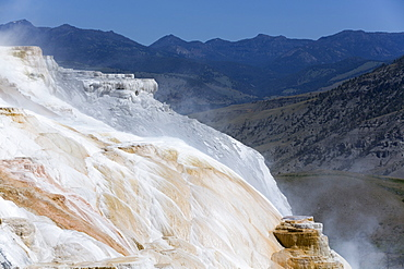 Mammoth Hot Springs, Yellowstone National Park, UNESCO World Heritage Site, Wyoming, United States of America, North America