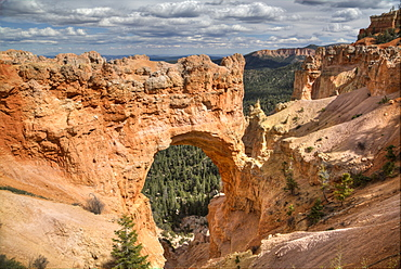 Natural Bridge, Bryce Canyon National Park, Utah, United States of America, North America