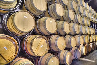 Wine Storage Barrels, Quinta do Crasto, Alto Douro Wine Valley, UNESCO World Heritage Site, Portugal, Europe