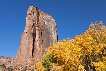 Canyon de Chelly National Monument, Canyon del Muerto in Fall Colors, Arizona, United States of America, North America