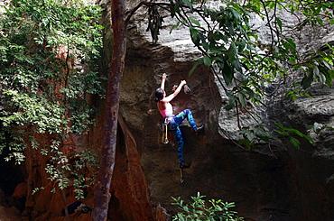 A climber scaling limestone cliffs in the jungle at Serra do Cipo, Minas Gerais, Brazil, South America