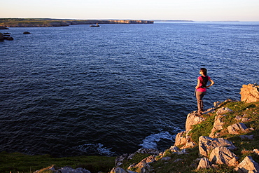 A woman hiking at St. Govan's Head on the Pembrokeshire Coast, Wales, United Kingdom, Europe