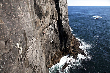 Rock climber in action, Mingulay, Outer Hebrides, Scotland, United Kingdom, Europe