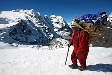 A high altitude porter carries a heavy load using the traditional basket and tump (headband) used by the Nepali porters, under Mera Peak, 6420 metres, a popular trekking peak in the Khumbu region, near Mount Everest, Himalayas, Nepal, Asia