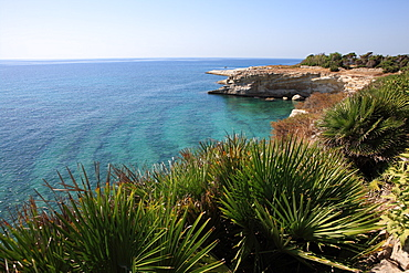 Coast near Cassibile, Siracusa Province, Sicily, Italy, Mediterranean, Europe