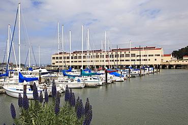Fort Mason Center, Marina, San Francisco, California, United States of America, North America