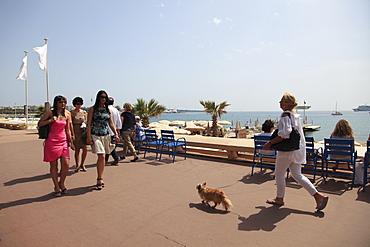 La Croisette, Cannes, Cote d'Azur, Alpes Maritimes, Provence, French Riviera, France, Mediterranean, Europe