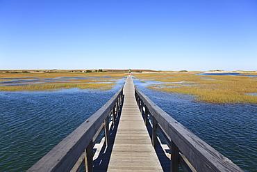 Boardwalk, Salt Marsh, Sandwich, Cape Cod, Massachusetts, New England, United States of America, North America