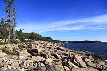 Atlantic Coastline, Acadia National Park, Mount Desert Island, Maine, New England, United States of America, North America