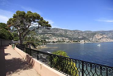 Coastal Path, Cap Ferrat Peninsula, Alpes Maritimes, Cote d'Azur, French Riviera, Provence, France, Europe