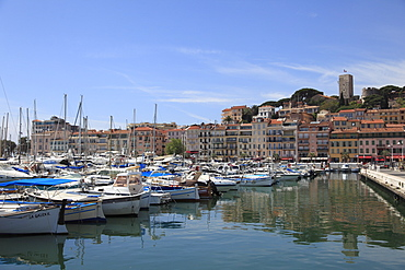 Harbor, Le Suquet, Old Town, Cannes, Alpes Maritimes, Cote d'Azur, Provence, French Riviera, France, Mediterranean, Europe