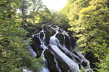 Swallow Falls, Waterfall, Afon Llugwy River, near Betws-y-Coed, North Wales, Wales, United Kingdom, Europe