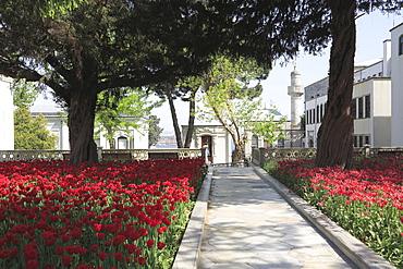 Tulip Garden, Fourth Courtyard, Topkapi Palace, UNESCO World Heritage Site, Istanbul, Turkey, Europe