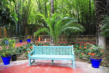 Jardin Majorelle (Majorelle Gardens), restored by fashion designer Yves Saint Laurent, Marrakesh (Marrakech), Morocco, North Africa, Africa
