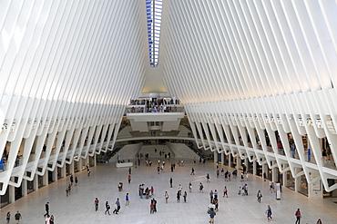 Oculus, architect Santiago Calatrava, World Trade Center Transportation Hub, Financial District, Manhattan, New York City, United States of America, North America