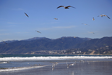Beach, Santa Monica, Malibu Mountains, Los Angeles, California, United States of America, North America