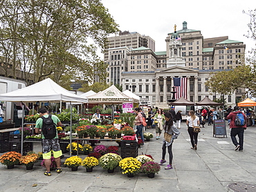 Greenmarket in front of Brooklyn Borough Hall, Brooklyn, New York, United States of America, North America