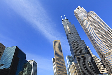 Chicago skyscrapers including the Willis Tower, formerly the Sears Tower, Chicago, Illinois, United States of America, North America