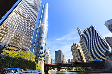 Skyscrapers along the Chicago River, including Trump Tower, Chicago, Illinois, United States of America, North America