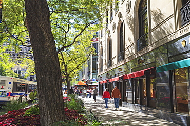 The Magnificent Mile, North Michigan Avenue, Chicago's premier shopping street, Chicago, Illinois
