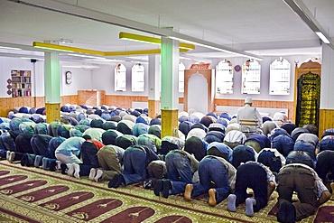 Ramadan prayers, Groningen, Netherlands, Europe