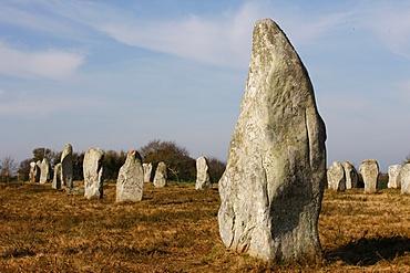 Menec menhirs in Carnac, Morbihan, Brittany, France, Europe