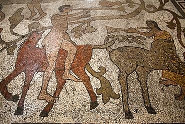 Mosaic of riders on the floor of the central nave, Otranto Duomo, Otranto, Lecce, Apulia, Italy, Europe
