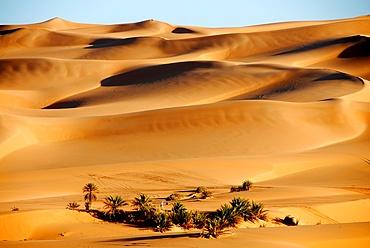 Erg Ubari desert, Ubari, Libya, North Africa, Africa