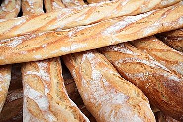 French baguettes, Paris, France, Europe