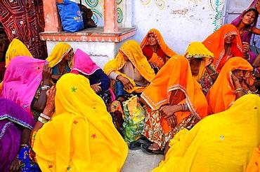 Rajasthani women, Pushkar, Rajasthan, India, Asia