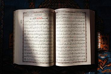 Koran, Paris, France, Europe