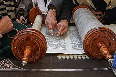 Faithful reading the Torah at the Western Wall, Jerusalem, Israel, Middle East