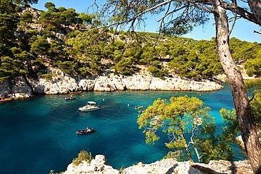Port-Pin creek near Cassis, Bouches du Rhone, Provence, France, Europe