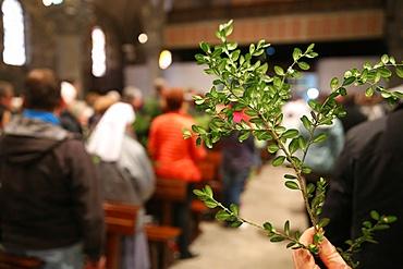 Palm Sunday, Holy Week, La Roche-sur-Foron, Haute-Savoie, France, Europe