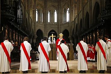 Priest ordinations at Notre-Dame de Paris cathedral, Paris, France, Europe