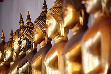 Seated Golden Buddha statues in a row at Wat Pho (Temple of the Reclining Buddha), Bangkok, Thailand, Southeast Asia, Asia