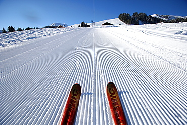 Red pair of ski in snow, groomed ski piste in the French Alps, Haute-Savoie, France, Europe