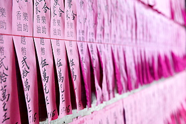 List of philanthropists, Taoist temple, Phuoc An Hoi Quan Pagoda, Ho Chi Minh City, Vietnam, Indochina, Southeast Asia, Asia