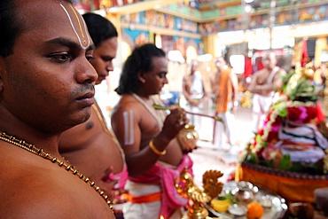 Brahmin priests, Sri Vadapathira Kaliamman Hindu Temple, Singapore, Southeast Asia, Asia