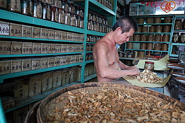Herbal medicine therapy, traditional Chinese medicine pharmacy, Ho Chi Minh City, Vietnam, Indochina, Southeast Asia, Asia